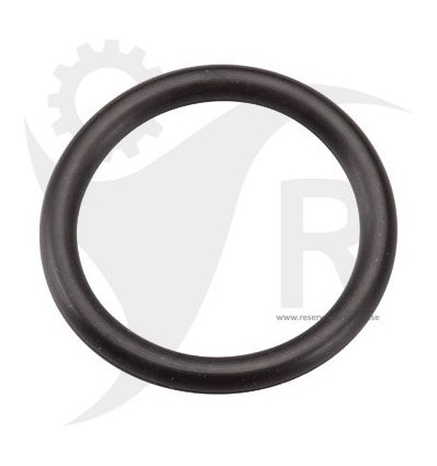 BRIGGS & STRATTON O-ring, packning 270344 - 2